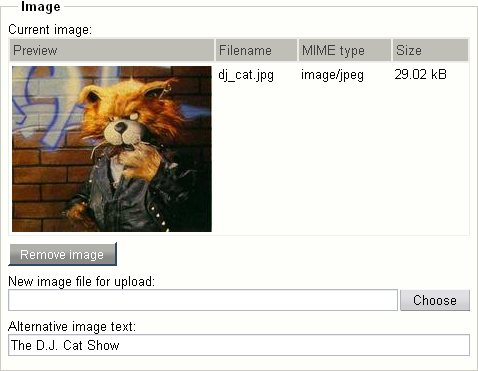 "Object attribute edit interface for the ""Image"" datatype."